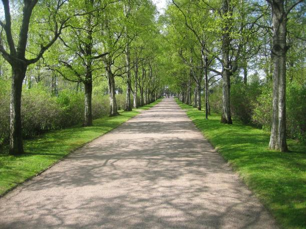 A_road_at_Hietaniemi_cemetery